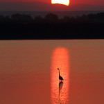 Sonnenuntergang am Darscho